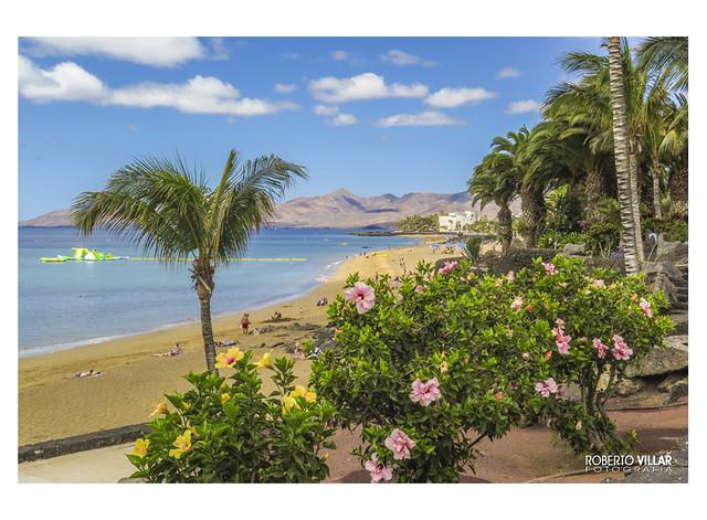 Playa Grande  # 2644a