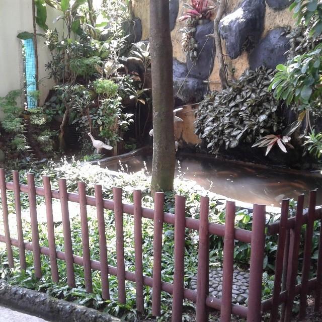 kecil itu indah sebuah taman yg indah tidak harus di ruan