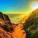 Summer Sun in Malibu