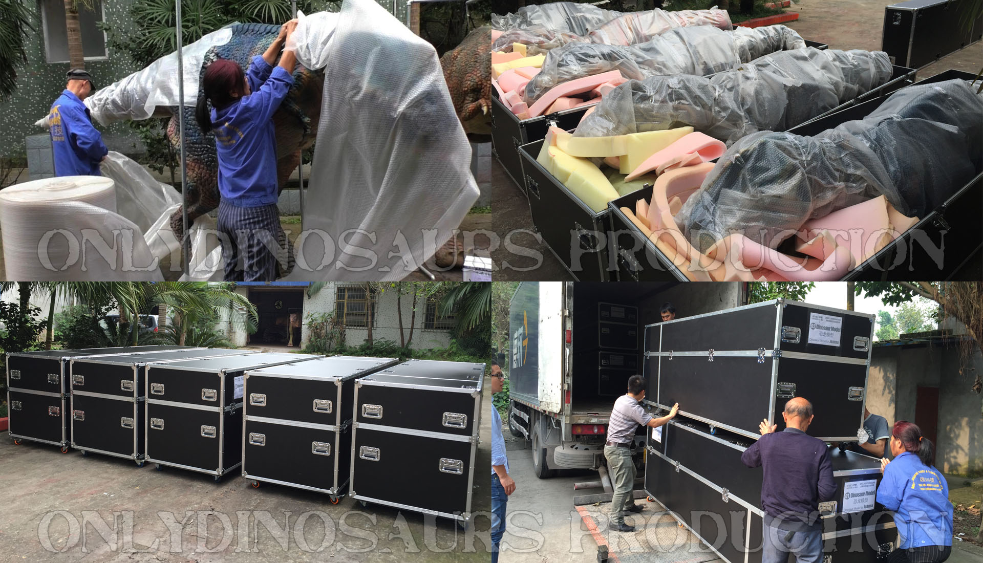 Dinosaur Suit Packing & Delivery