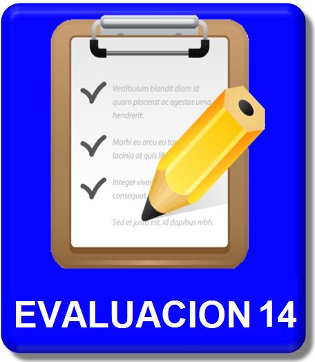 icono evaluacion 14