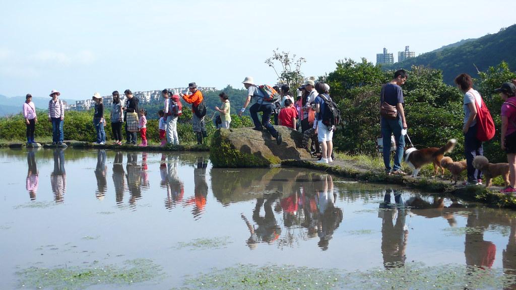 八煙聚落遊客眾多,當地也面臨人潮帶來的各種問題。圖片來源:台灣濕地網。