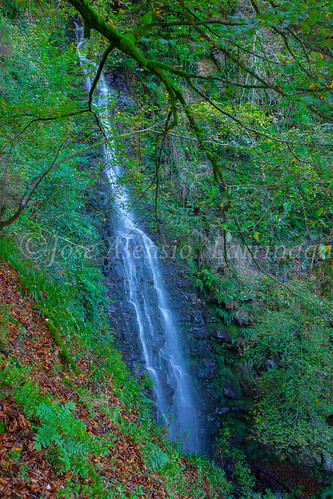 Parque Natural de #Gorbeia #DePaseoConLarri #Flickr      -1436