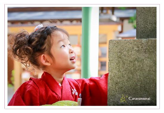 七五三写真 ロケーション撮影 愛知県瀬戸市 深川神社 窯垣の小径 かわいい 自然な おしゃれ 全データ
