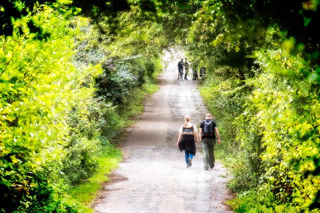 Cheshunt Country Walk Dog Friendly