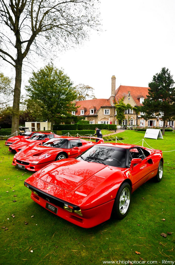 ferrari 288 gto f50 enzo f40 zoute grand prix 2014 flickr. Black Bedroom Furniture Sets. Home Design Ideas