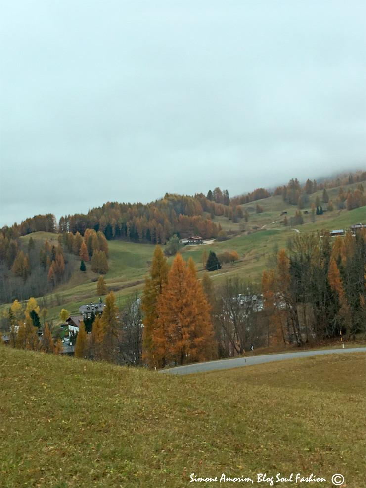 De Coritna começamos a subir a montanha e olha que lindo.