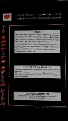 Museo di Storia Naturale di Milano Battito della vita del Progetto EST