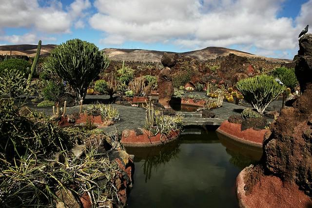 Jardin de cactus lanzarote flickr photo sharing for Jardin de cactus lanzarote