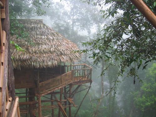 उत्तर पूर्व में बांस का प्रयोग न सिर्फ घर बनाने के लिए बल्कि दूसरे कामों के लिए भी किया जाता है