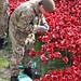 Honours the fallen