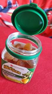 mini gum forte pharma défenses pomme