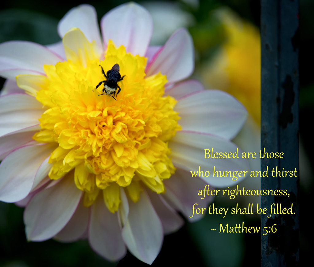 Image Result For Bible Verses Garden Flowers