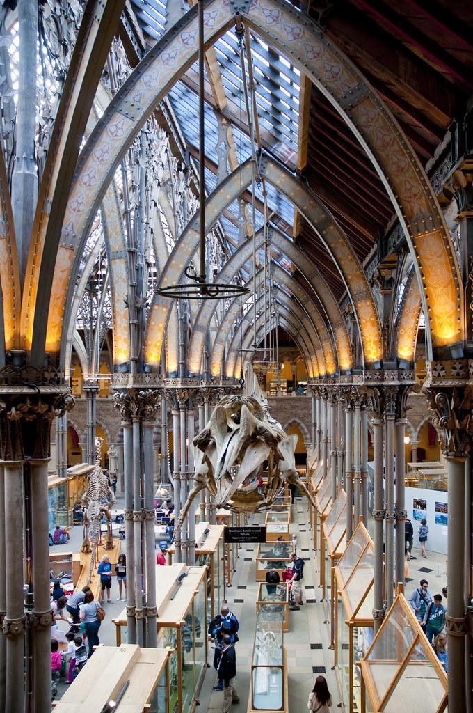 University Of Oxford: Natural History Museu