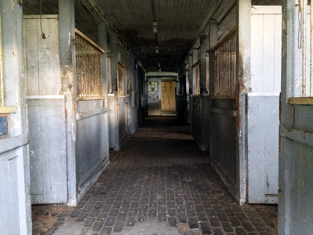 Horse Stable Jobs On Long Island