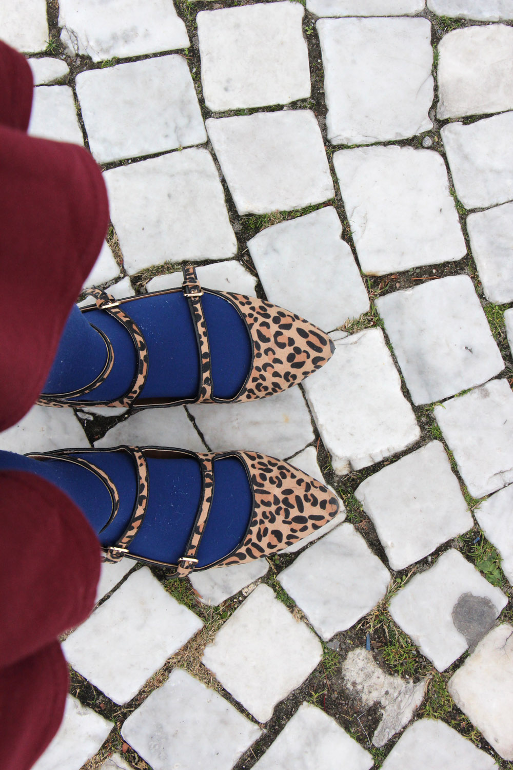 Target Leopard Print Strappy Flats with Blue Tights