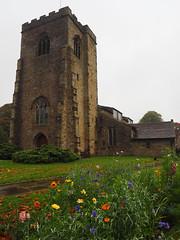 Late autumn colour in the churchyard