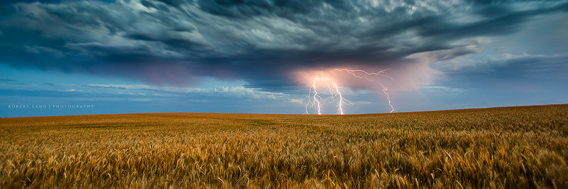Lightning strikes over wheat crop, South Australia