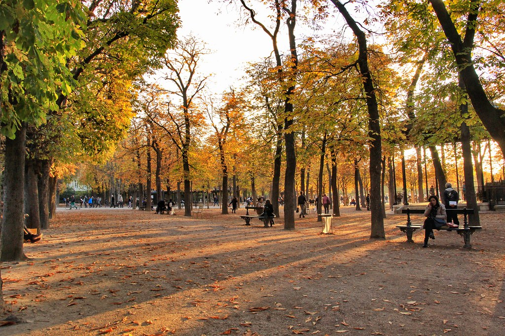 Autumn in Paris - Le Jardin du Luxembourg, Paris