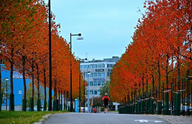 Corriendo por las calles de Helsinki