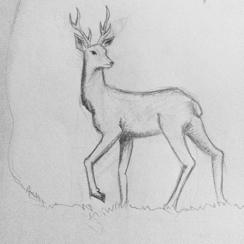how to draw antlers easy