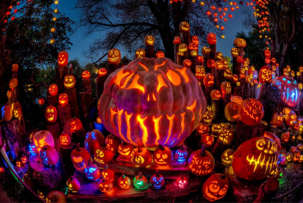 Roger Williams Zoo Halloween