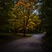 Autumn POP at Nelson Dewey State Park