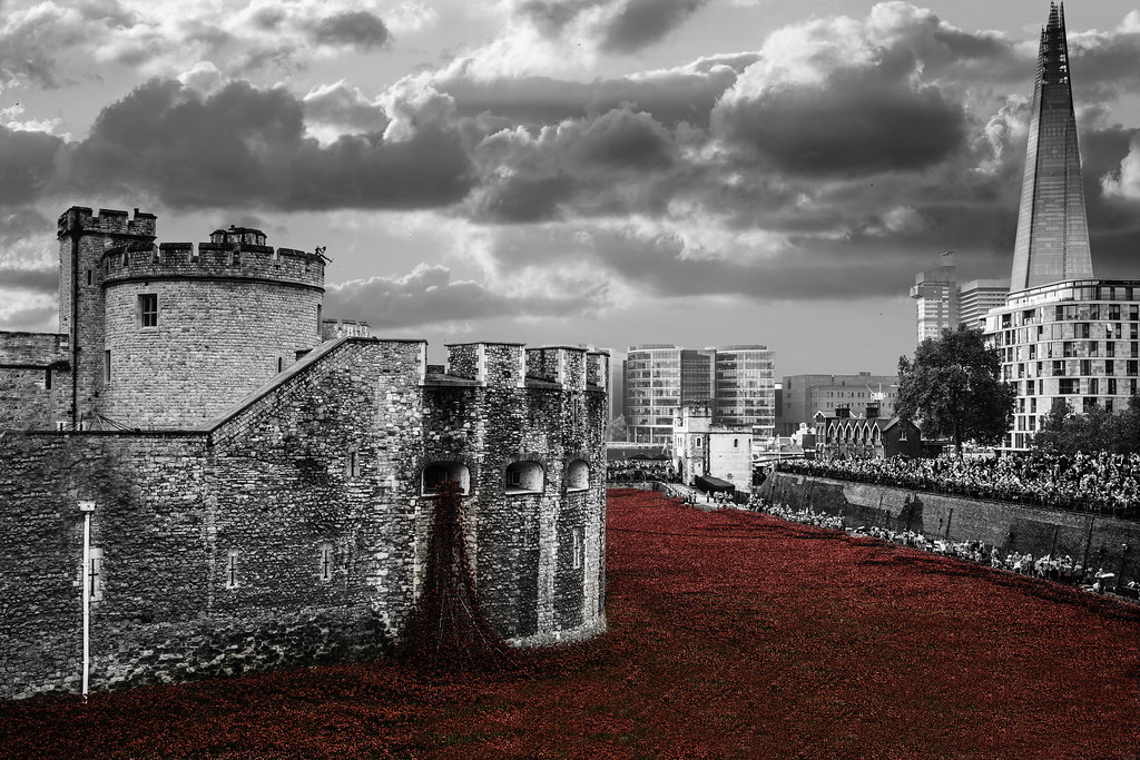 Poppies At The Tower Of London Ceramic Poppies At The