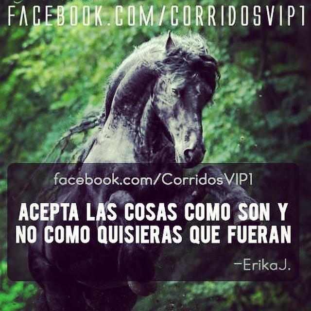 Tan fácil 👍 @corridosvip http://instagram.com/corridosvip | Flickr ...