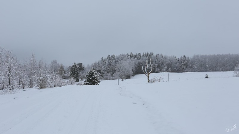Ziema Latvijā