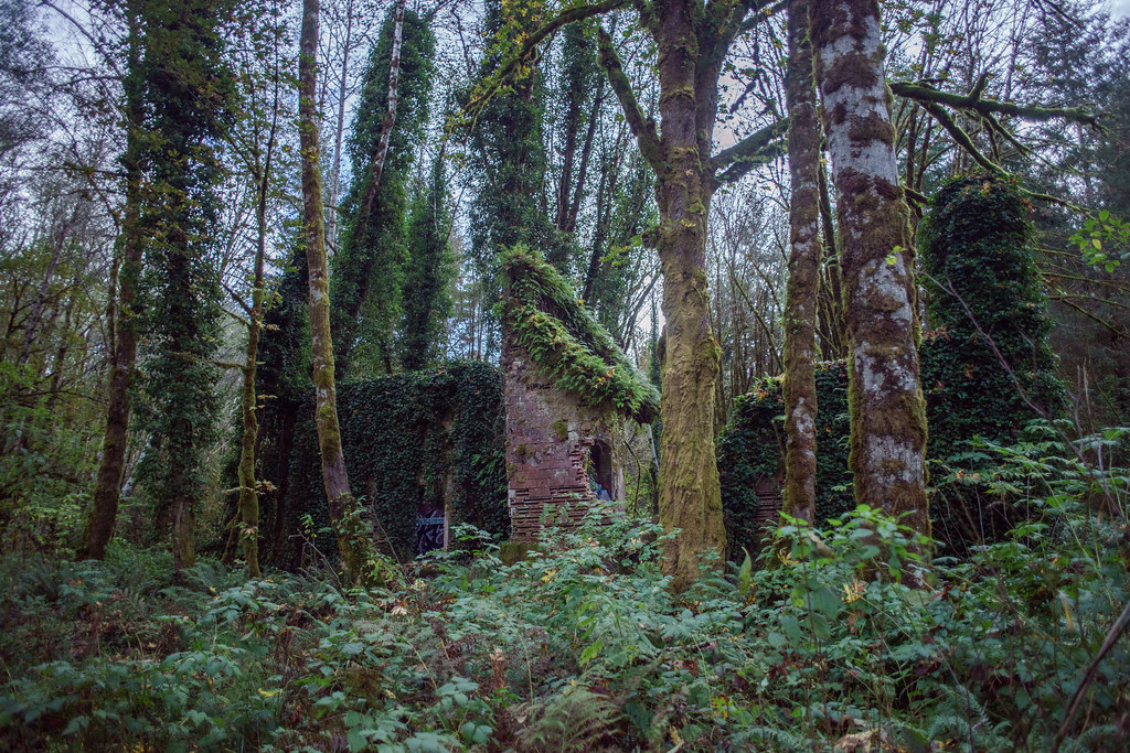 Bordeaux Washington Ghost Town Ruin  Flickr