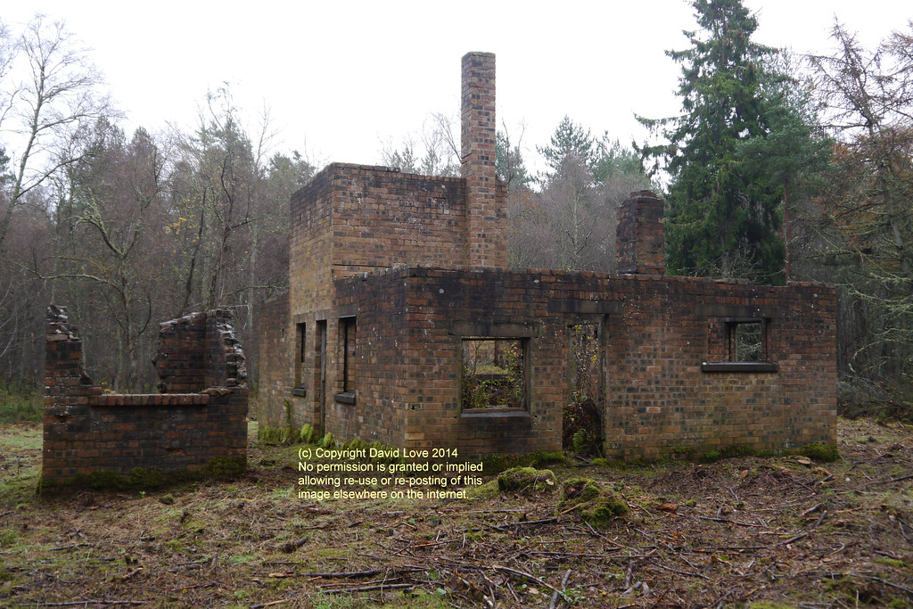 Polish Camp Tentsmuir Forest Fife West Facing View Of
