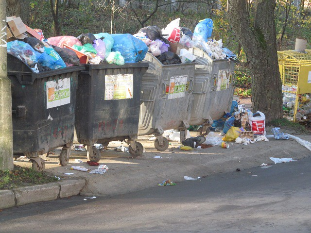 Без чиновників смітник незрушать