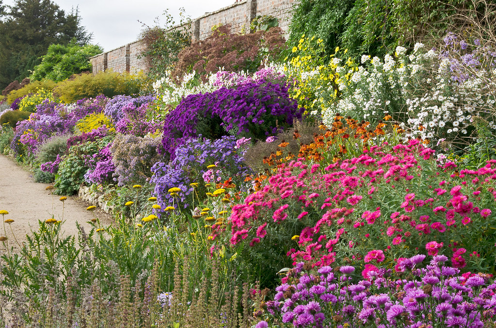 English herbaceous borders waterperry gardens oxfordshi for Garden 50 designs to help you destress