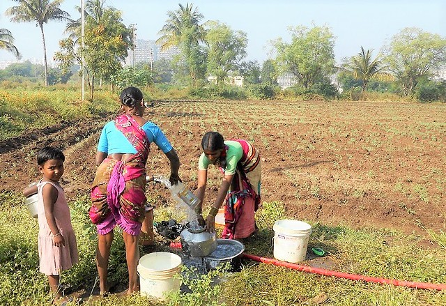 Farmers help them with amenities such as water. Women use water from the borewells on the fields for bathing, cooking and washing clothes.