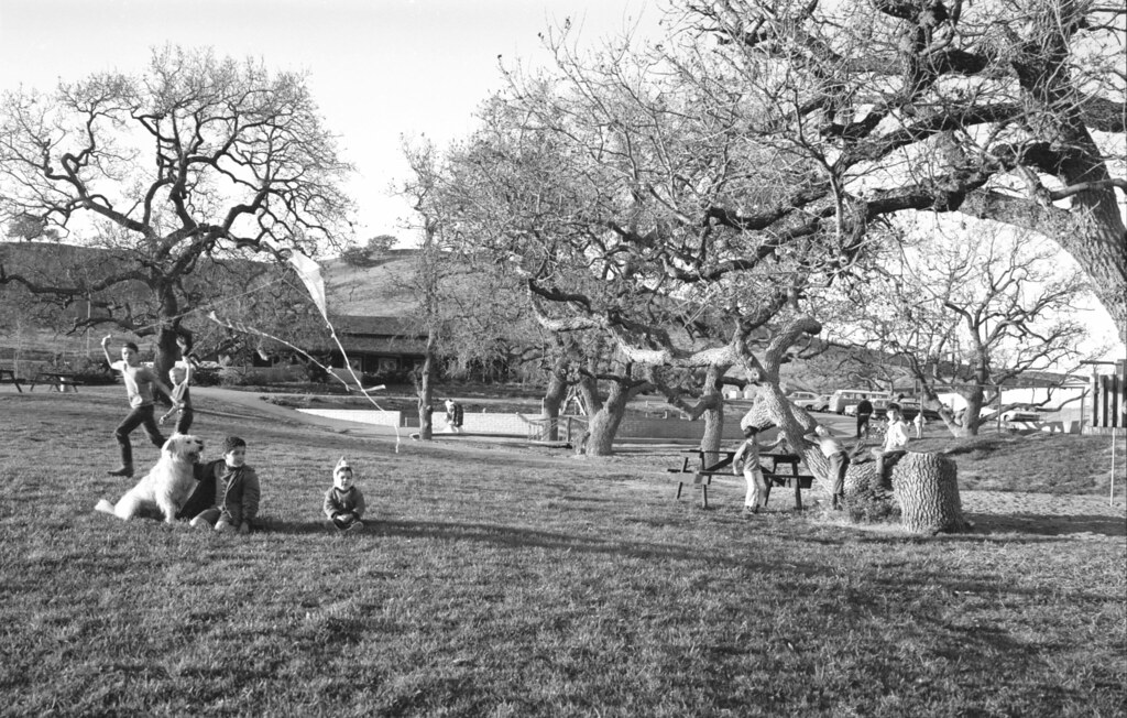 A Great Day at the Park | Children fly kites, romp, and ...