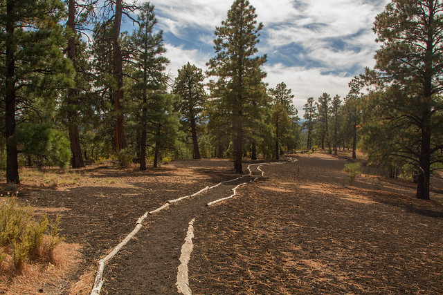 Sunset Crater Trail