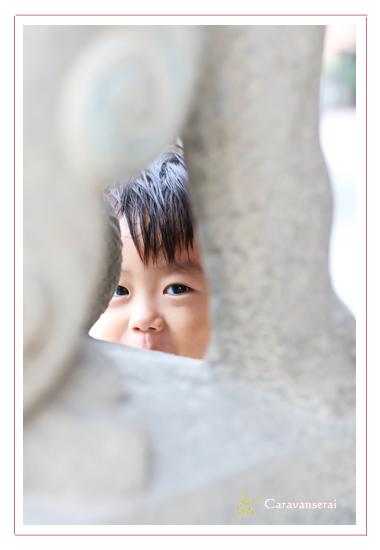 兄弟で七五三写真 男の子と女の子 国府宮神社 愛知県稲沢市 公園 屋外 出張撮影 着物 和装 おしゃれ
