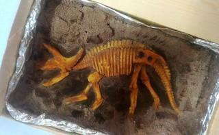 午茶點心 侏儸紀化石禮盒-三角龍(隨機出貨不挑款)