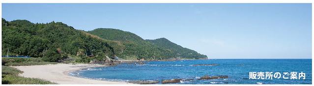 黑潮町的海,圖片來源:http://kuroshiocan.co.jp/