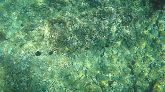 Víz alatti dolgok