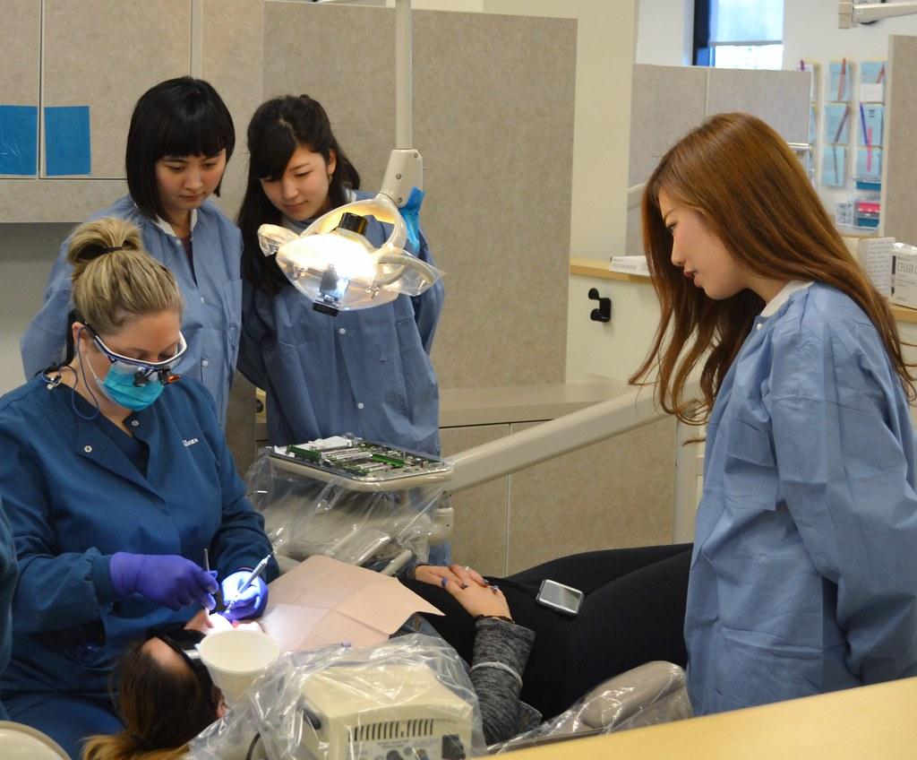 Dental Hygiene Jobs In Kansas City Prisons