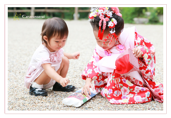 七五三写真,猿投神社(愛知県豊田市),ロケーション撮影,出張撮影,着物,和装,自宅,おしゃれ,全データ