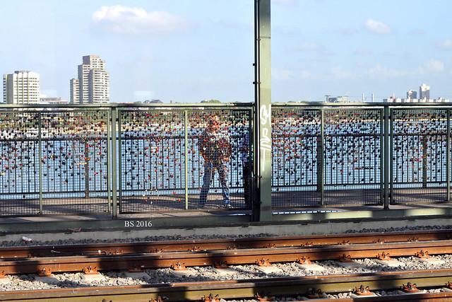 Liebesschlösser Hohenzollerbrücke Köln - Ein Paar bringst sein Schloss am Brückengeländer an und versenkt den Schlüssel im Rhein - Fotos: Brigitte Stolle 2016