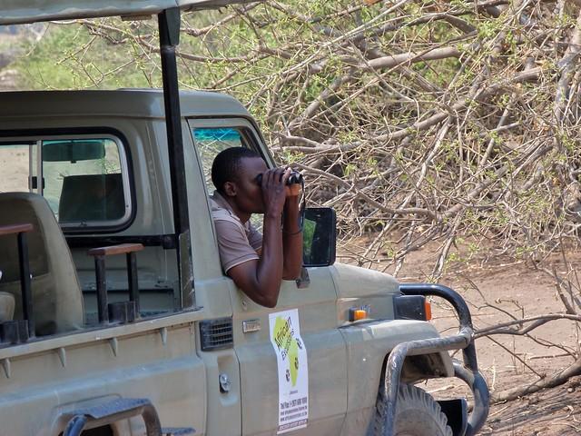 El rastreo en un safari es esencial