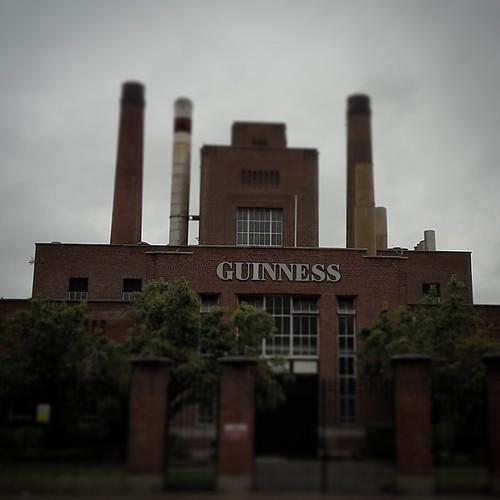 Dublino: Guinness Storehouse