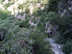 La descente du vieux chemin après le 2ème col du sentier de l'Ancinu