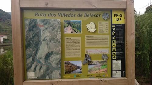 Ruta dos viñedos de Belesar