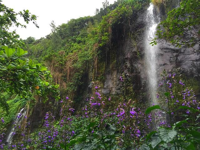 Anse des cascades (Isla Reunión)