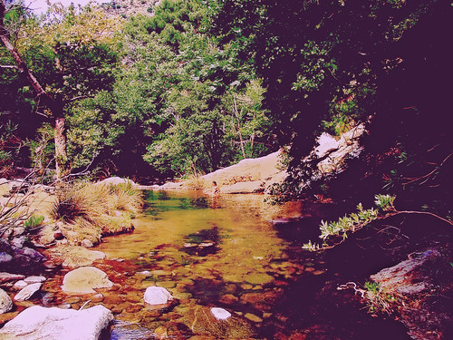 «≅ river 2003 ≅». An article in my blog about Chalares Canyon: my own small stories inside this beautiful mountain gorge, some comments and a few old photos.